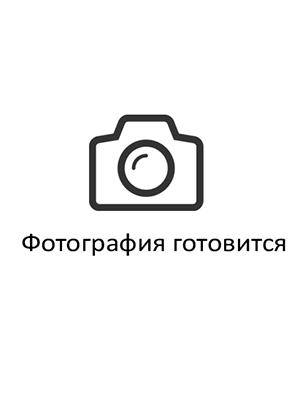 Латынин Игорь Иванович